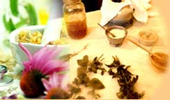 naturopathy-tour1